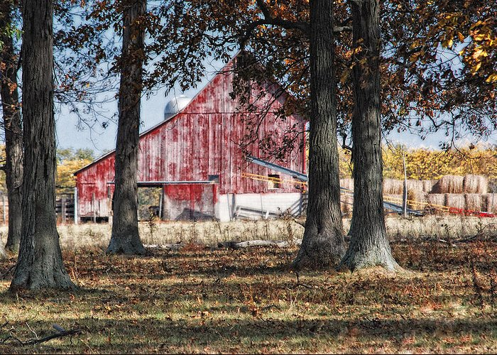 Agriculture Greeting Card featuring the photograph Red Barn Through The Trees by Pamela Baker