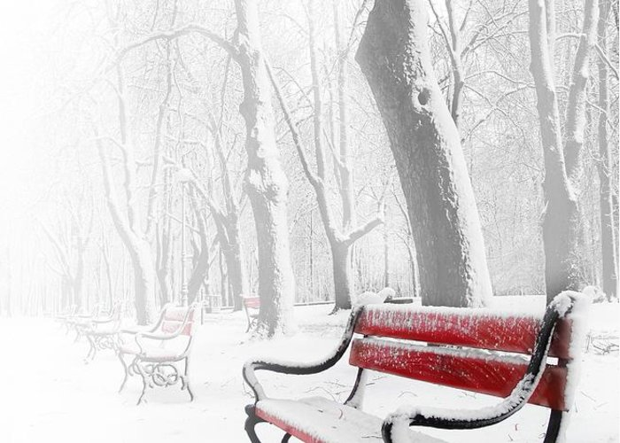 Beautiful Greeting Card featuring the photograph Red Bench In The Snow by Jaroslaw Grudzinski