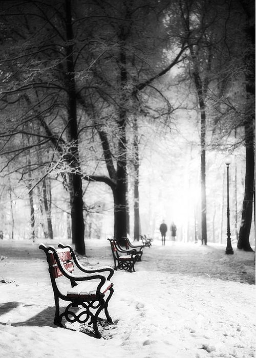 Winter Greeting Card featuring the photograph Red Benches In A Park by Jaroslaw Grudzinski