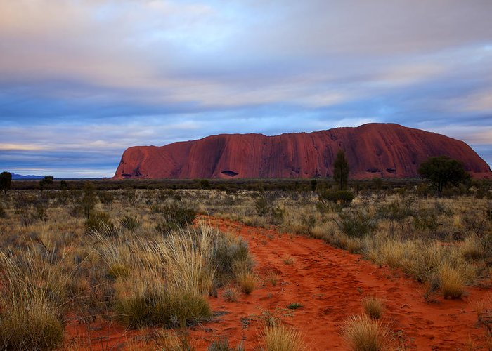 Ularu Greeting Card featuring the photograph Red Center Dawn by Mike Dawson