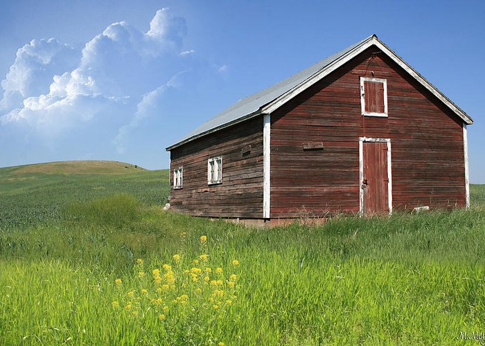 Barn Greeting Card featuring the photograph Red Shed by Melisa Meyers