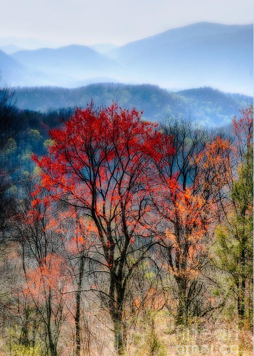 Beautiful Greeting Card featuring the photograph Red Spring by Irene Abdou