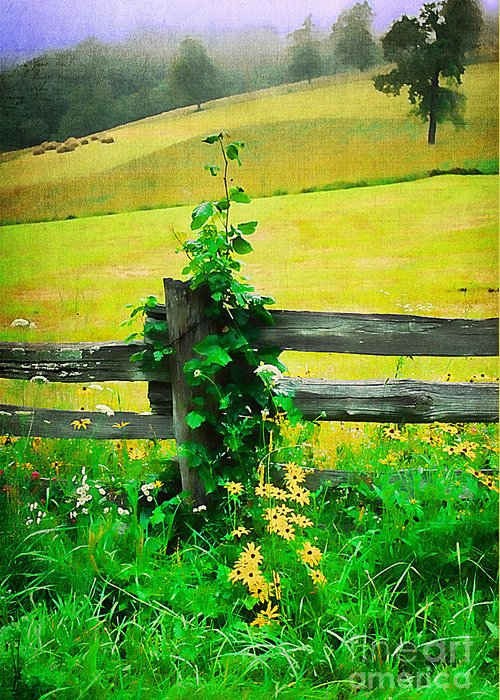 Agriculture Greeting Card featuring the photograph Roadside Beauty by Darren Fisher