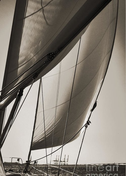 Sailing Greeting Card featuring the photograph Sailing Beneteau 49 Sloop by Dustin K Ryan