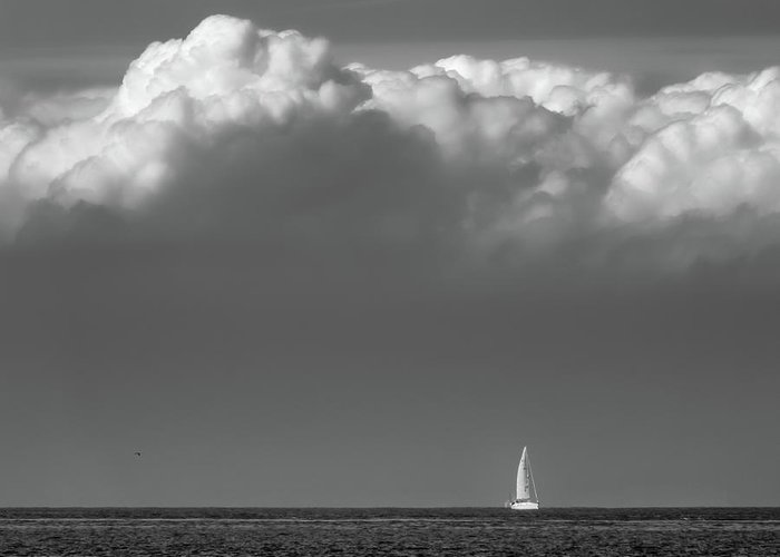Sailboat Greeting Card featuring the photograph Sailing Home by Wim Lanclus