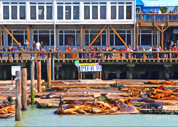 San Francisco Greeting Card featuring the photograph San Francisco Pier 39 Sea Lions . 7d14272 by Wingsdomain Art and Photography