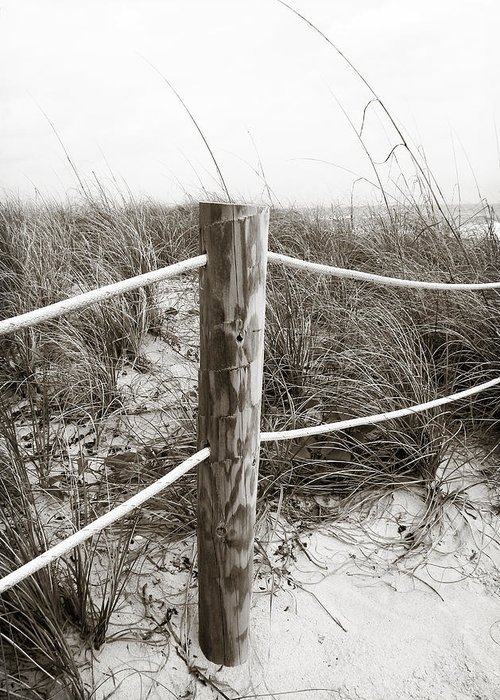 Seascape Greeting Card featuring the photograph Sand And Grass by Julie Palencia