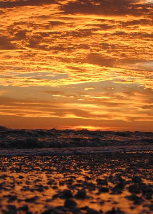 Photograph Greeting Card featuring the photograph Sanibel Island by Nick Flavin