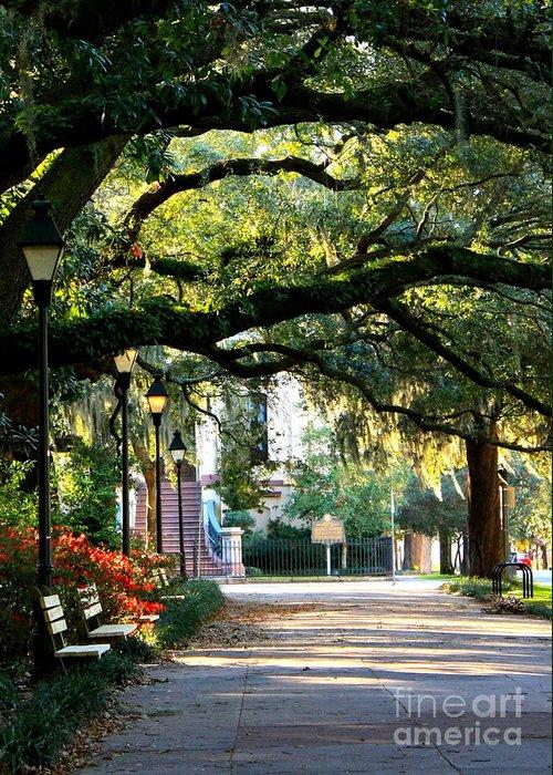 Savannah Greeting Card featuring the photograph Savannah Park Sidewalk by Carol Groenen