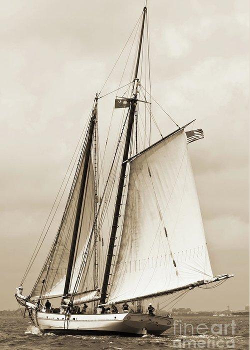 Schooner Greeting Card featuring the photograph Schooner Sailboat Spirit Of South Carolina Sailing by Dustin K Ryan