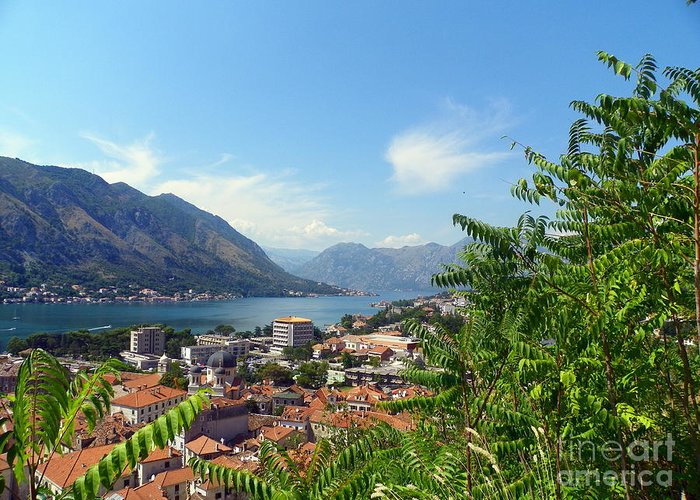 Adriatic Sea Greeting Card featuring the photograph Sea View From Kotor by Elizabeth Fontaine-Barr