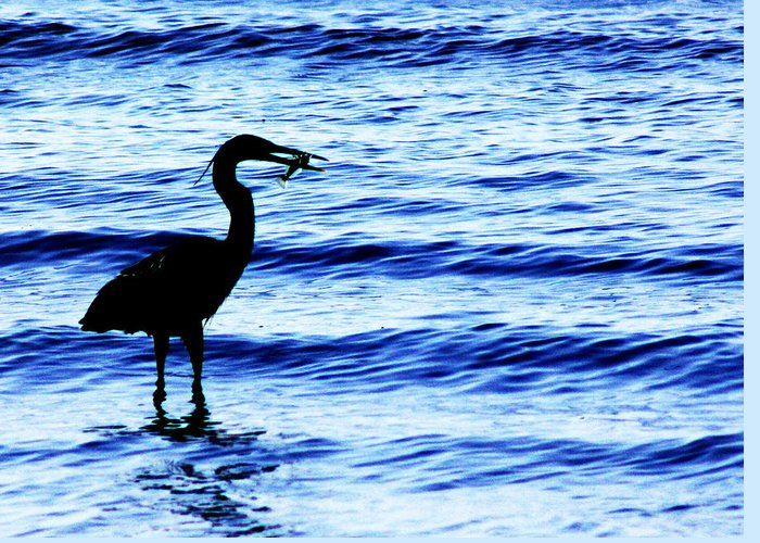 Heron Greeting Card featuring the photograph Seafood Deli by Barbara White