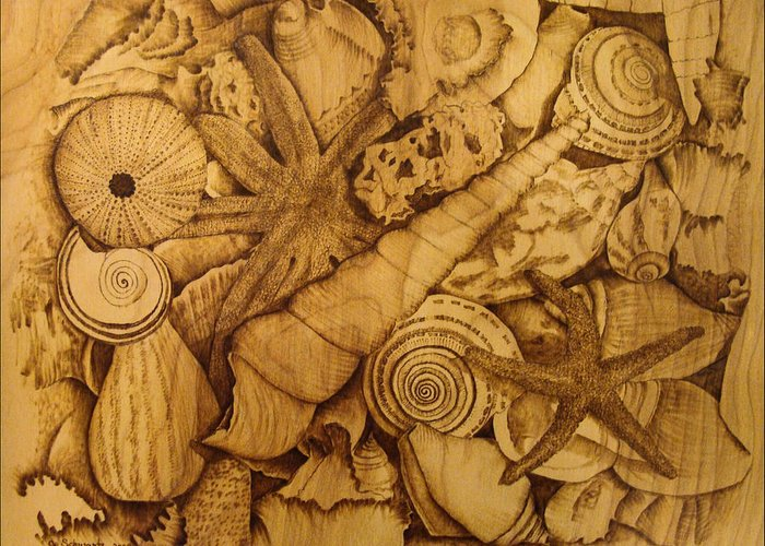 Pyrography; Sepia; Shells; Sea Shells; Starfish; Ocean; Sea; Underwater; Sea Life; Greeting Card featuring the pyrography Settled by Jo Schwartz