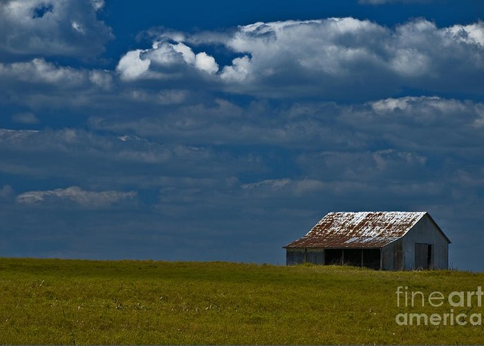 Farmland Greeting Card featuring the photograph Shed In The Light by Susan Yates