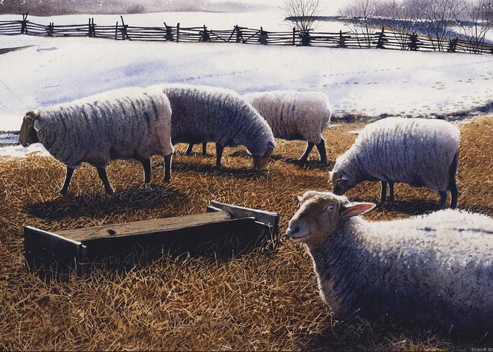 Sheep Greeting Card featuring the painting Sheepish by Denny Bond