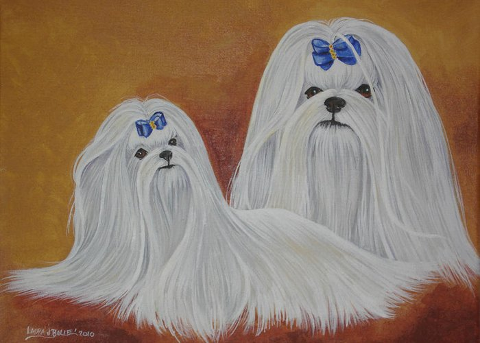 Maltese Greeting Card featuring the painting Show Maltese by Laura Bolle