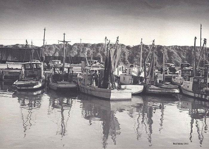 Shrimp Boats Mosquito Fleet Greeting Card by Fred Jinkins