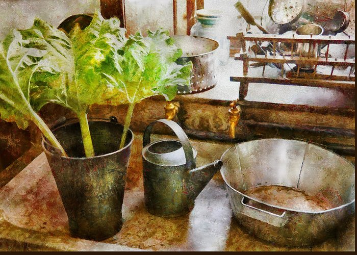 Suburbanscenes Greeting Card featuring the photograph Sink - Eat Your Greens by Mike Savad