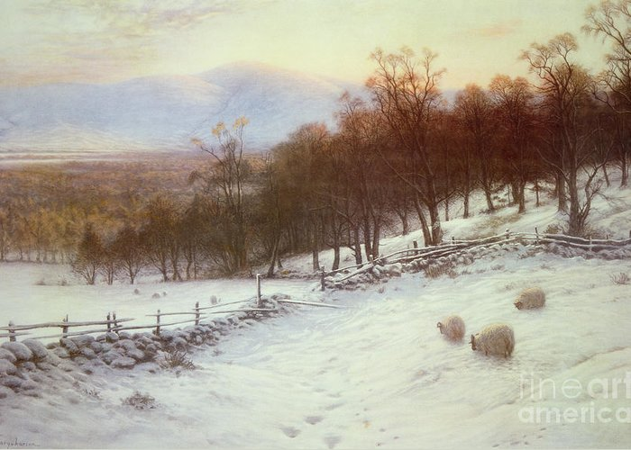 Snow Greeting Card featuring the painting Snow Covered Fields With Sheep by Joseph Farquharson