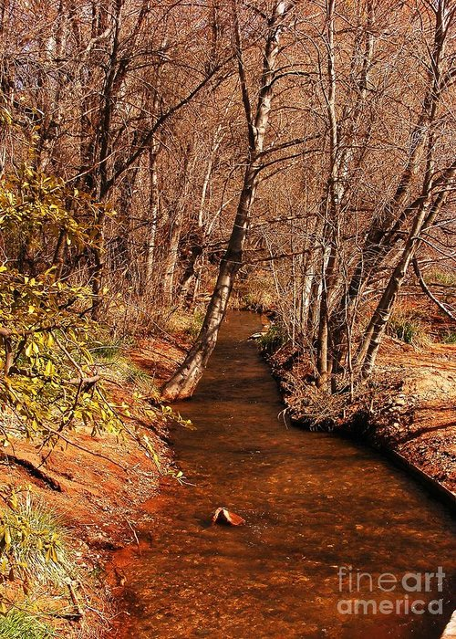 Oak Creek Greeting Card featuring the photograph Spring At Red Rock Crossing by Marilyn Smith