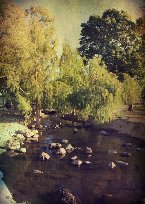 Landscapes Greeting Card featuring the photograph Stepping Stones To My Heart by Laurie Search