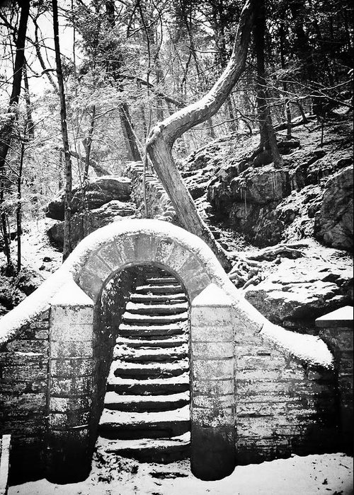 Philadelphia Greeting Card featuring the photograph Steps Along The Wissahickon by Bill Cannon