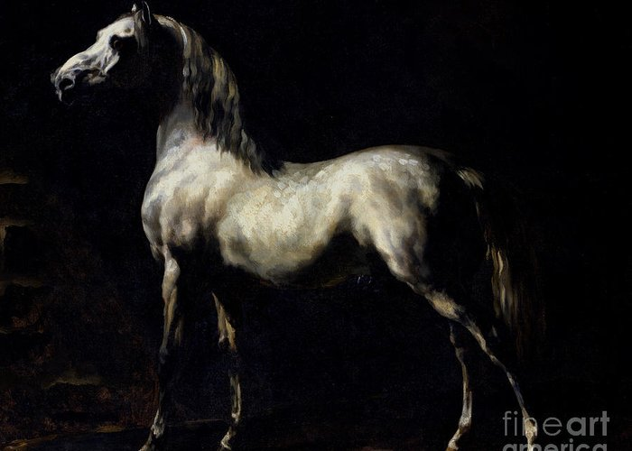 Etude De Cheval Blanc Ou Gris Pommele; Proud; Shadows; Horse Greeting Card featuring the painting Study Of A Dapple Grey by Theodore Gericault