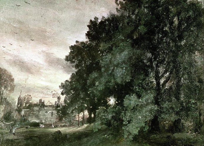 Study Greeting Card featuring the painting Study Of Trees by John Constable