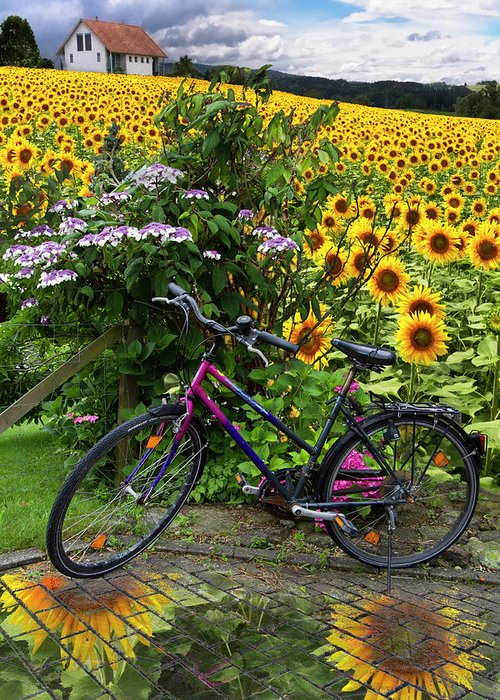Austria Greeting Card featuring the photograph Summer Cycling by Debra and Dave Vanderlaan