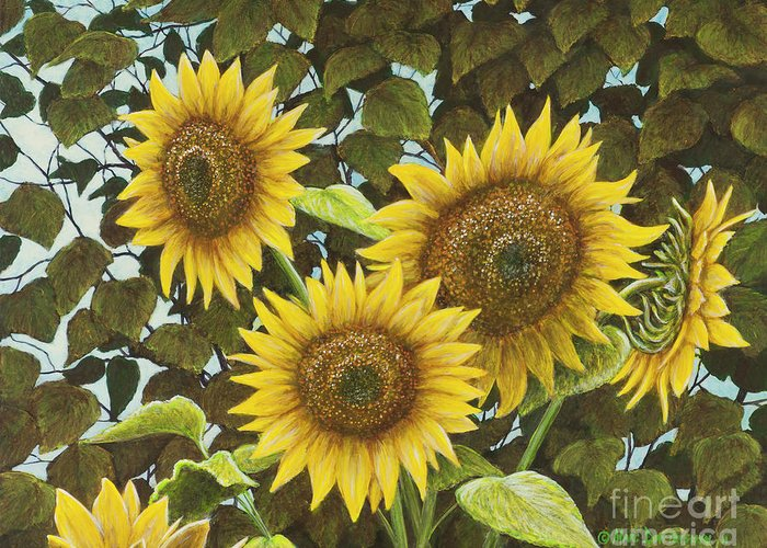 Sunflower Greeting Card featuring the painting Summer Quintet by Marc Dmytryshyn