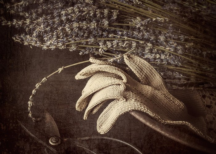 Glove Greeting Card featuring the photograph Summer's Grace by Amy Weiss