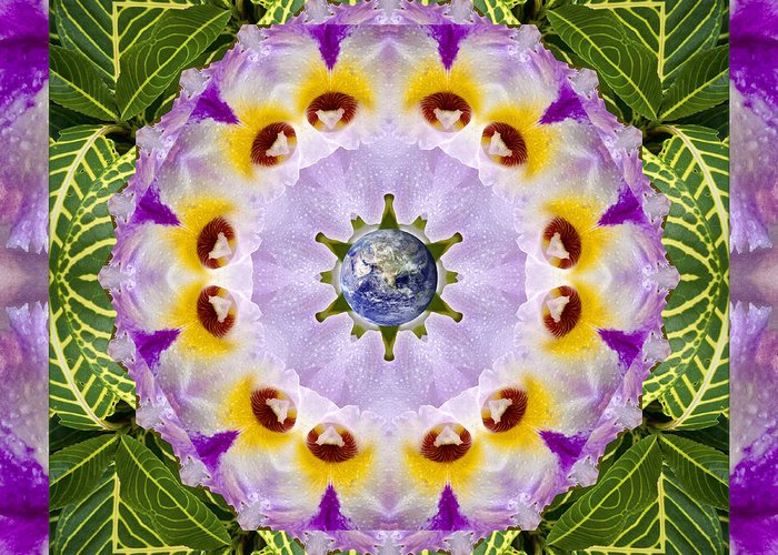 Mandalas Greeting Card featuring the photograph Sun Shower by Bell And Todd