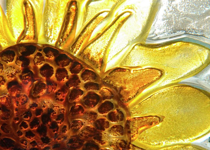 Sun Greeting Card featuring the photograph Sunburst Sunflower by Jerry McElroy