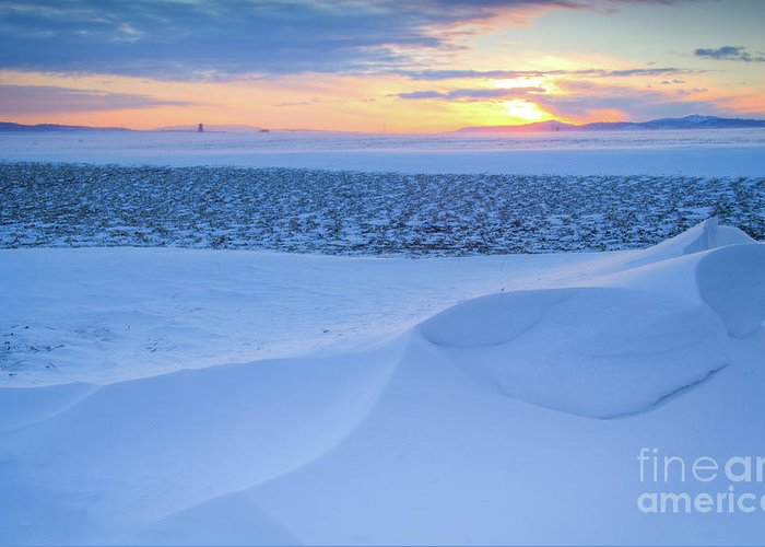 February Greeting Card featuring the photograph Sunset Drift by Idaho Scenic Images Linda Lantzy