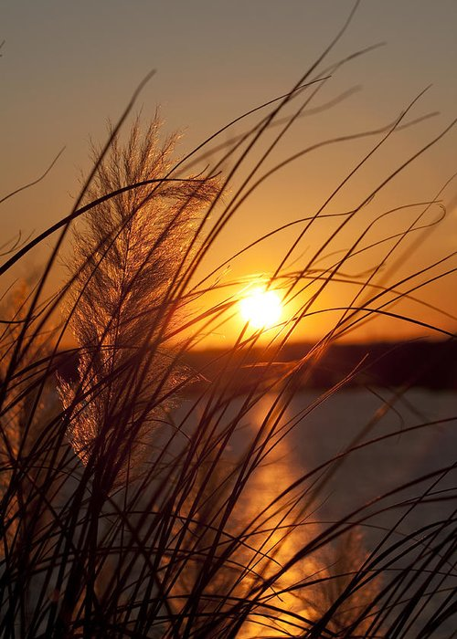 Sunset Greeting Card featuring the photograph Sunset Over Lake Wylie Sc by Dustin K Ryan