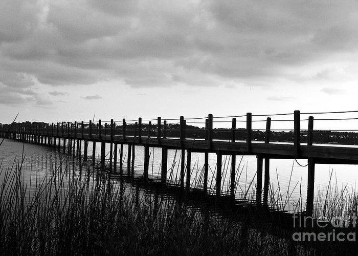 Black & White Greeting Card featuring the photograph Take Me Away by Scott Pellegrin