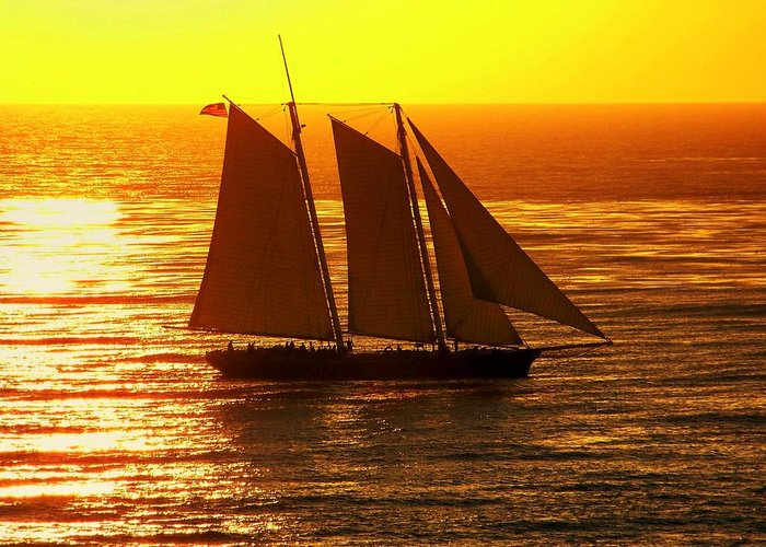 Sunsets Greeting Card featuring the photograph Tangerine Sails by Karen Wiles