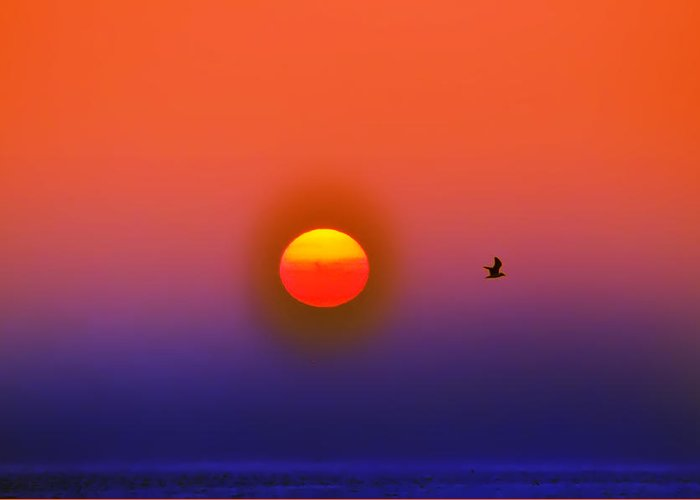 Sunrise Greeting Card featuring the photograph Tequila Sunrise by Bill Cannon