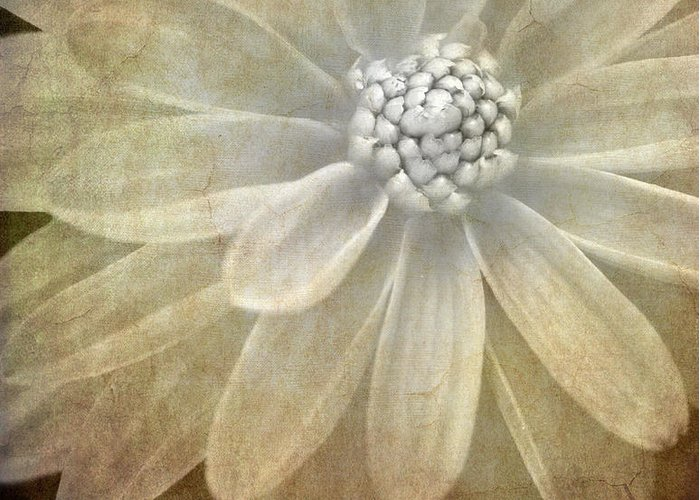 Greeting Card featuring the photograph Textured Dahlia by Meirion Matthias