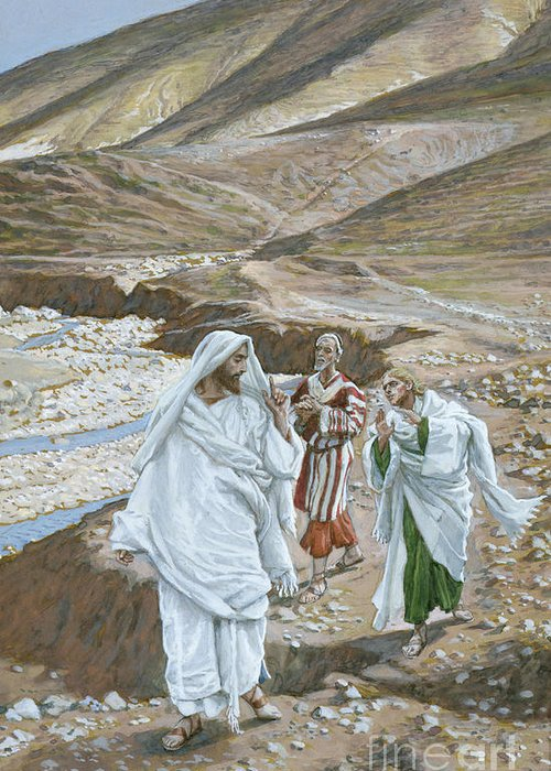 Calling Andrew Greeting Card featuring the painting The Calling Of St. Andrew And St. John by Tissot