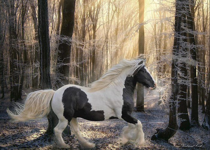 Equine Greeting Card featuring the digital art The Crystal Morning by Terry Kirkland Cook