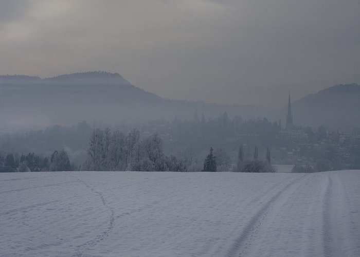 Winter Greeting Card featuring the photograph The Misty Wintery Afternoon by Angel Tarantella