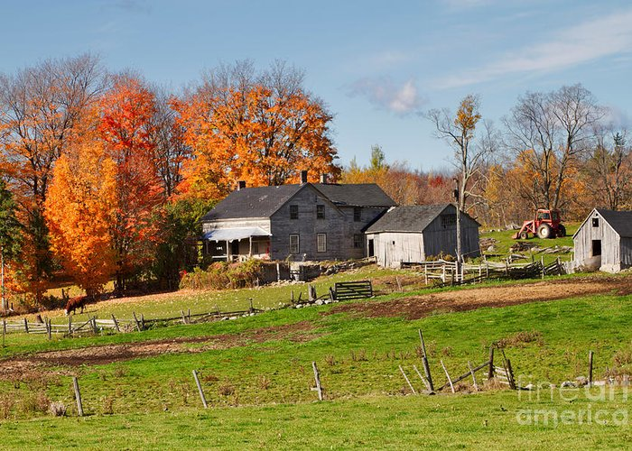 Farm Greeting Card featuring the photograph The Old Farm In Autumn by Louise Heusinkveld