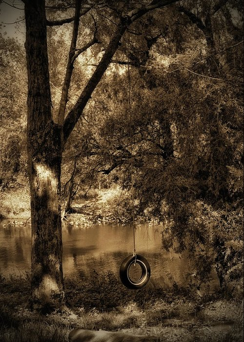 Tire Greeting Card featuring the photograph The Old Tire Swing by Bill Cannon