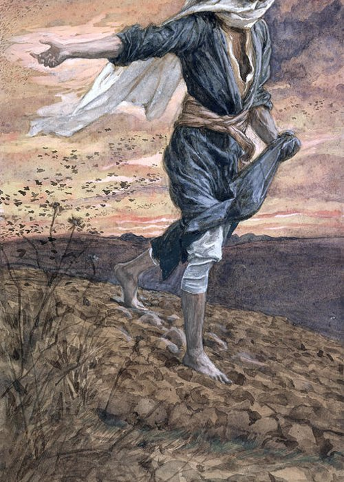 Greeting Card featuring the painting The Sower by Tissot