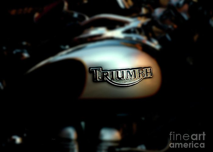 Triumph Greeting Card featuring the photograph The Triumph by Steven Digman