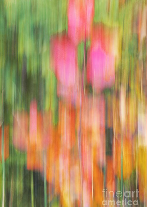 impressionist Photography Greeting Card featuring the photograph The Watercolor Garden by Aimelle