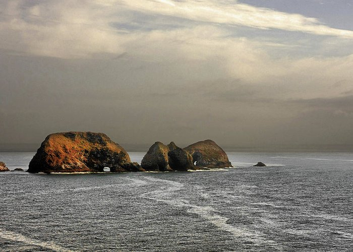 National Wildlife Refuge Greeting Card featuring the photograph Three Arch Rocks - Oceanside Near Cape Meares - Oregon by Christine Till