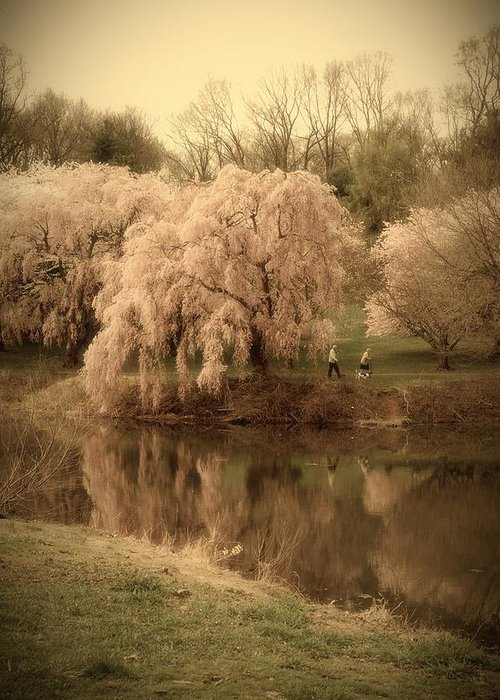 Anniversary Greeting Card featuring the photograph Through The Years - Holmdel Park by Angie Tirado