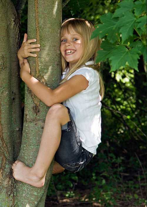 Tree Greeting Card featuring the photograph Tom Boy by Maria Dryfhout